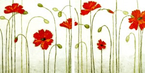 lacy red poppies