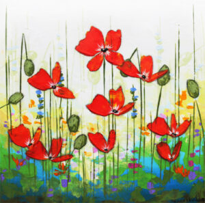 meadow poppies